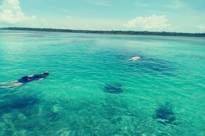 Blue hole snorkelling, and turtle park