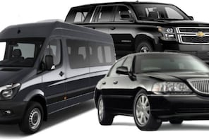 Private Transport from or to Dallas Love Field Airport