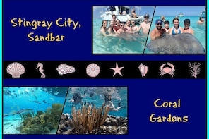 Stingray City and Snorkel Tour ( 2-Stops Adventure)