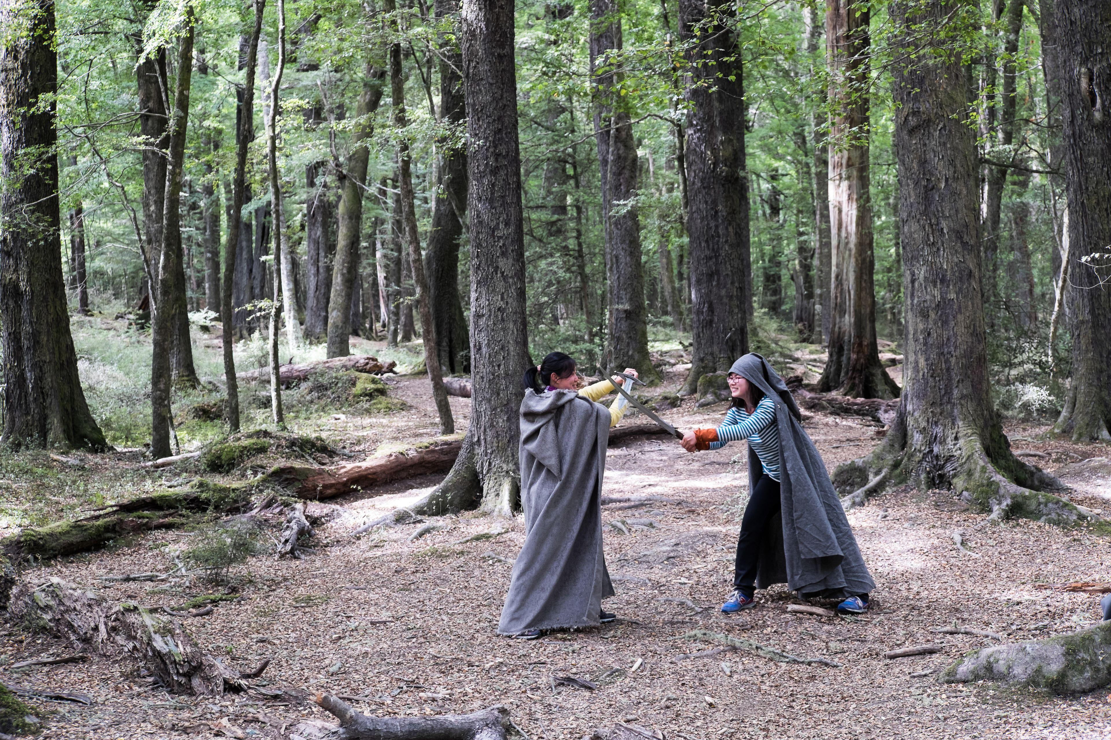 SOTS Glenorchy-Paradise Beech Forest.jpg