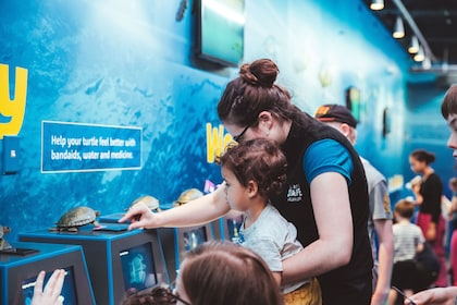 A staff member from Sea Life Kelly Tarlton's shows a child how to use Turtle Rescue.jpg