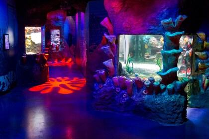 SEA LIFE Melbourne Aquarium Tickets