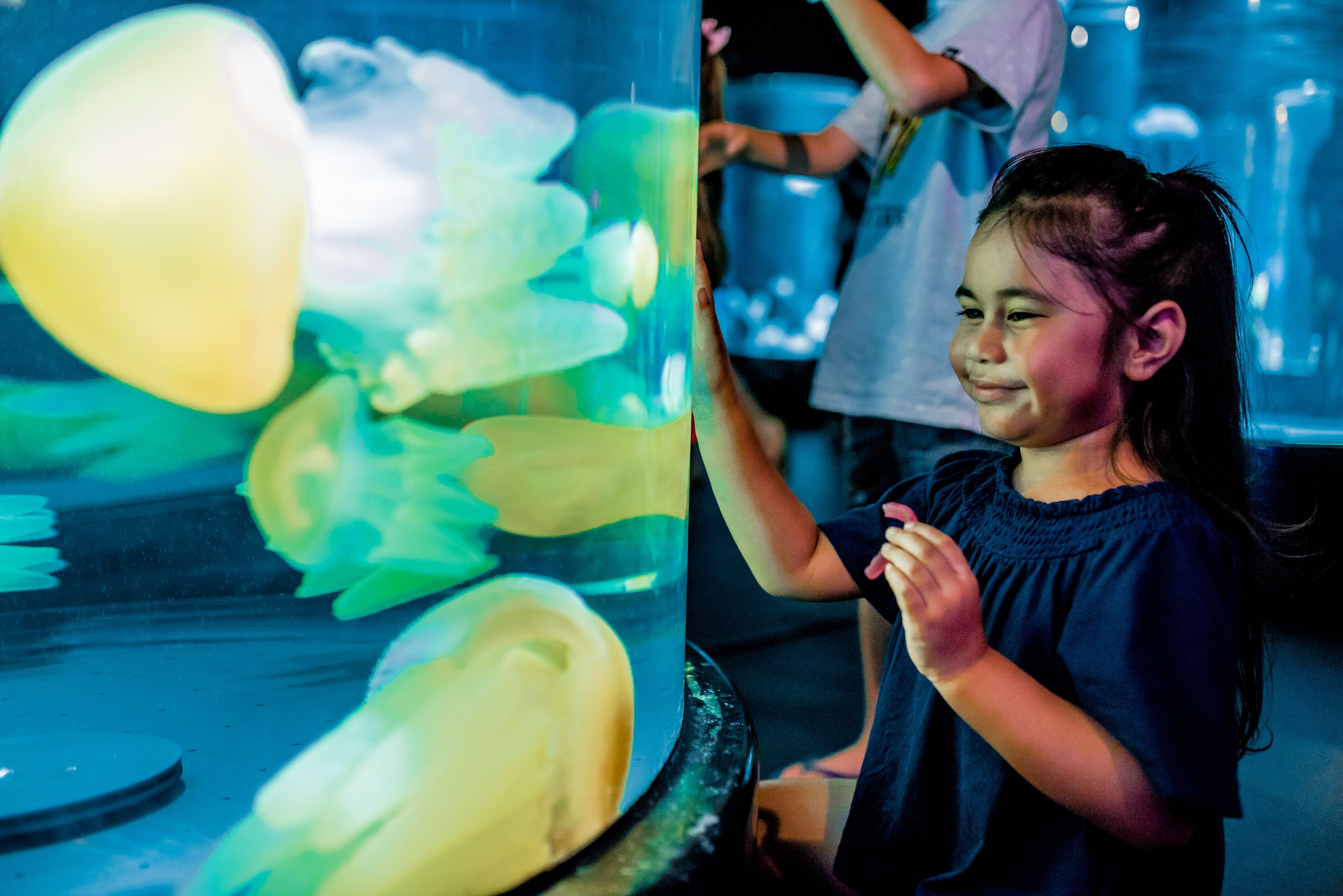Girl interacts with display in Jellyfish Lullaby exhibit at Sea Life Sydney Aquarium.jpg