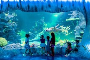 SEA LIFE Sydney Aquarium Tickets