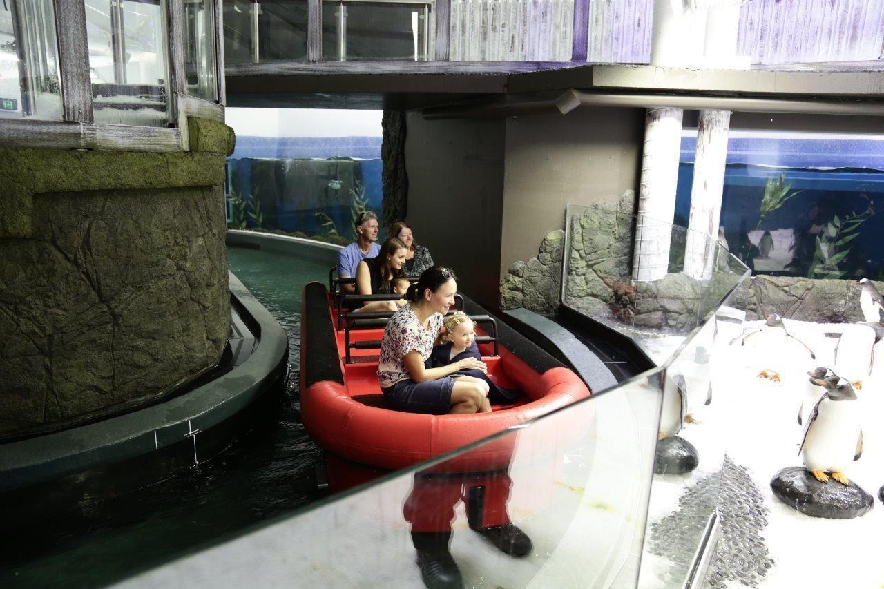 Penguin Expedition Raft Ride at SEA LIFE Sydney Aquarium (2).jpg