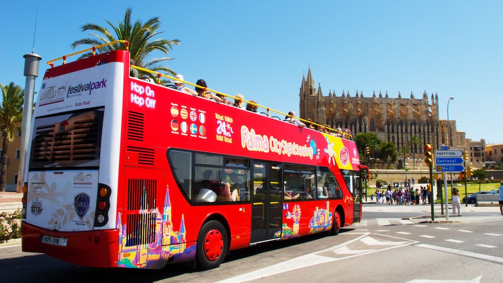Foto 4 von 10 laden City Sightseeing tour bus visiting the Palma Cathedral