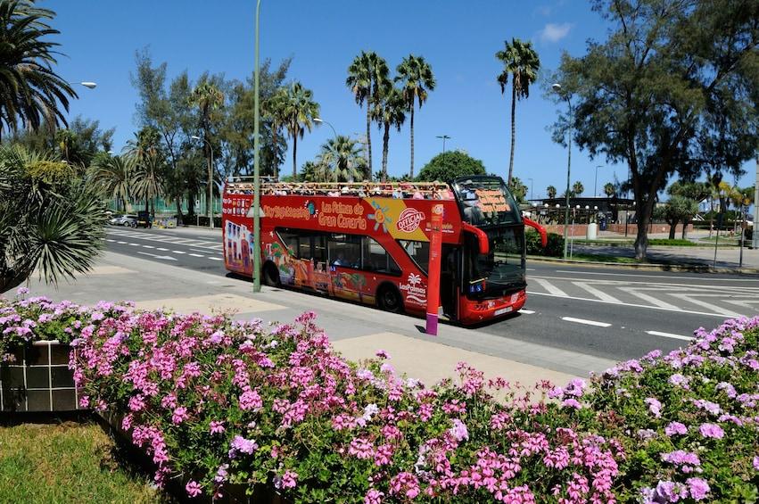Lataa valokuva 1 kautta 5. Las Palmas Hop-On Hop-Off Bus Tour