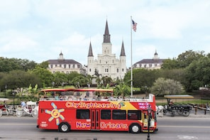 New Orleans Hop-On Hop-Off Bus Tour with Expert Guide