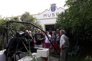 3 Days Algarve Holidays ( Hotel & Tour & Transfer )