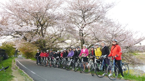 bicyclists in Tokyo