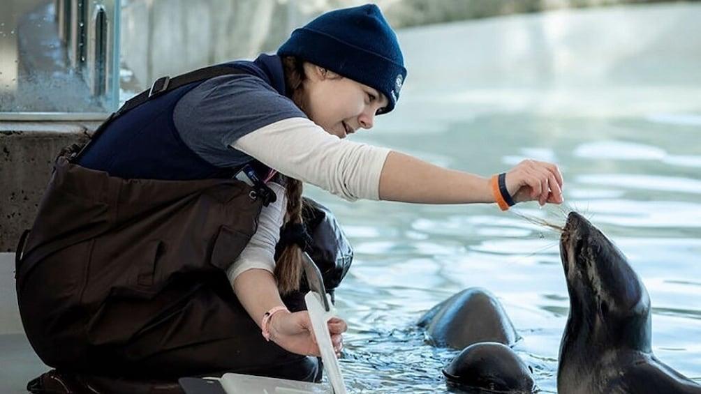 Show item 10 of 10. New England Aquarium Admission