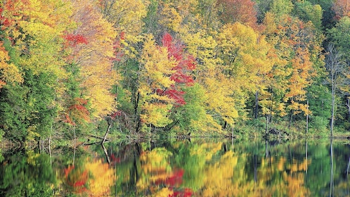 Colorful fall foliage reflected in a calm lake in New England