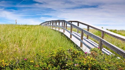 Long boardwalk through a grassy field in Sandwich, Massachusets