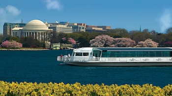 Odyssey Brunch Cruise in Washington D.C.