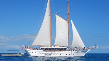 Whale's Tale All Inclusive Sail & Snorkel Adventure Cruise