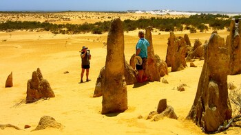 Pinnacles Desert & New Norcia Day Tour by Grey Line