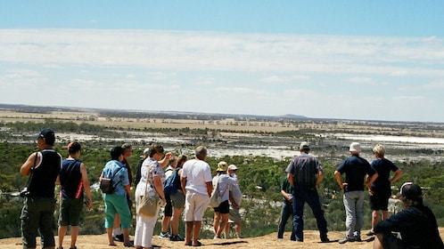 people overlooking the scenery from a vista near wave rock