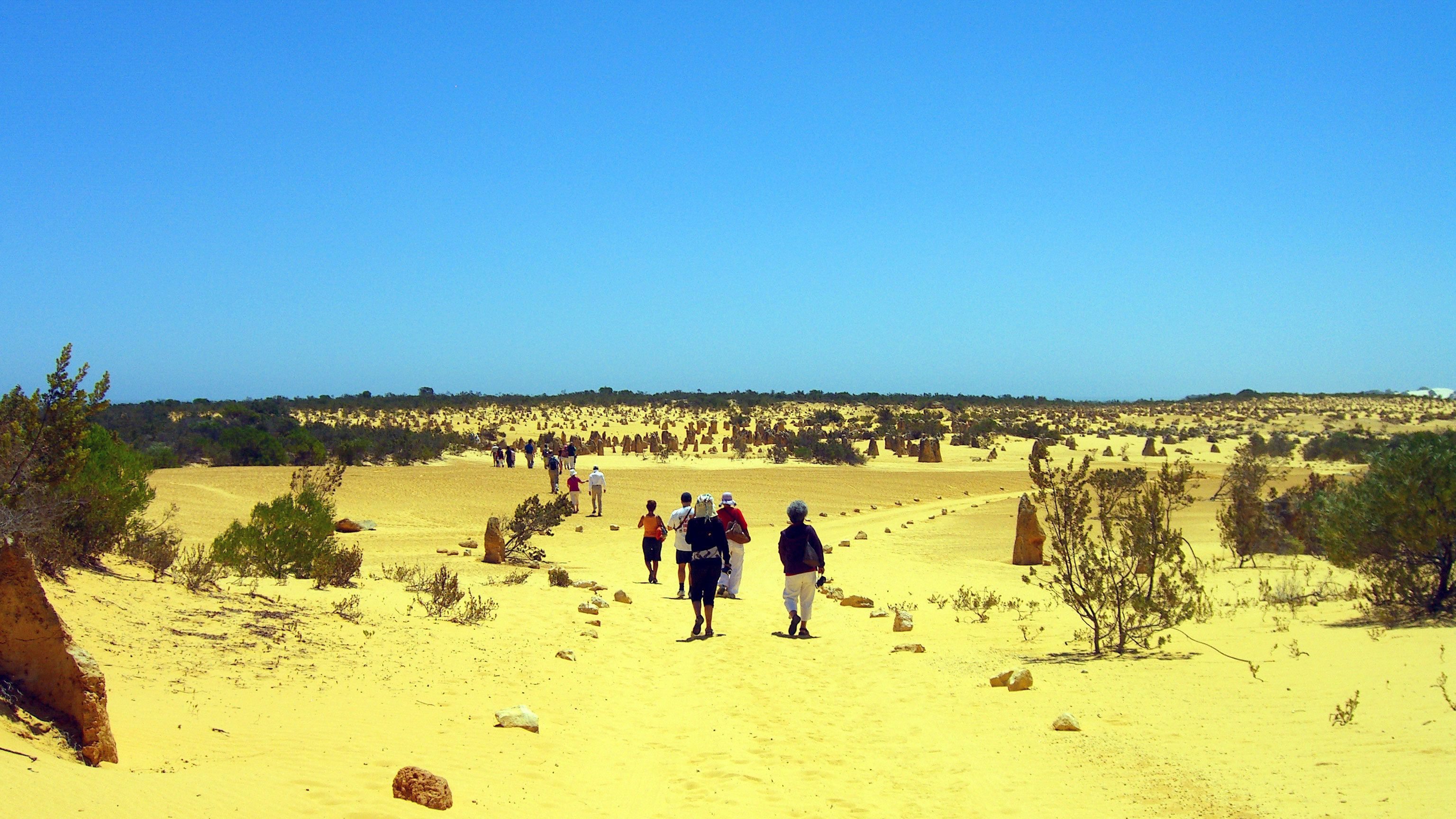A small group of people walking along a path in the Pinnacles desert