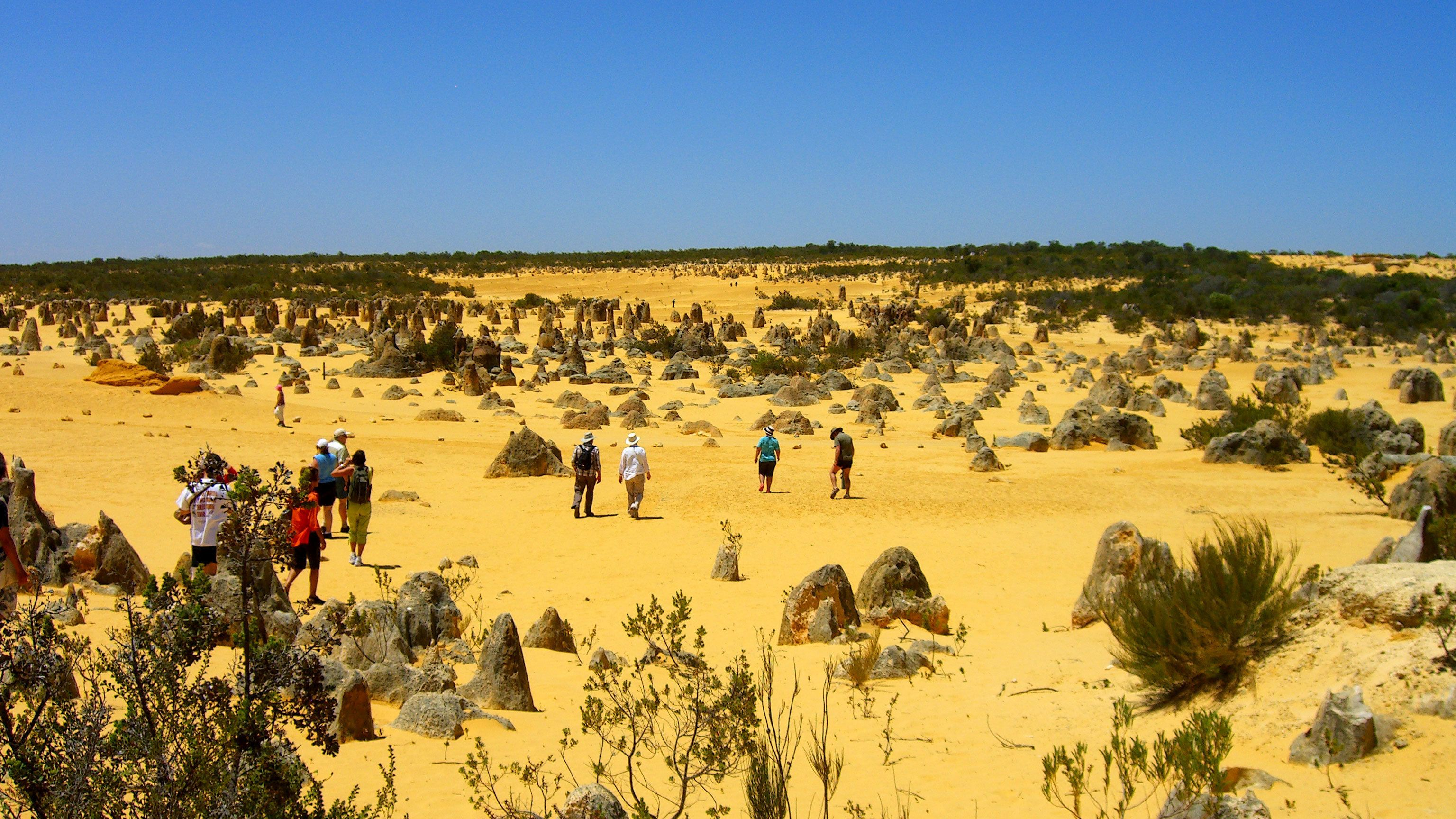 people walking around rock formations in the Pinnacles desert