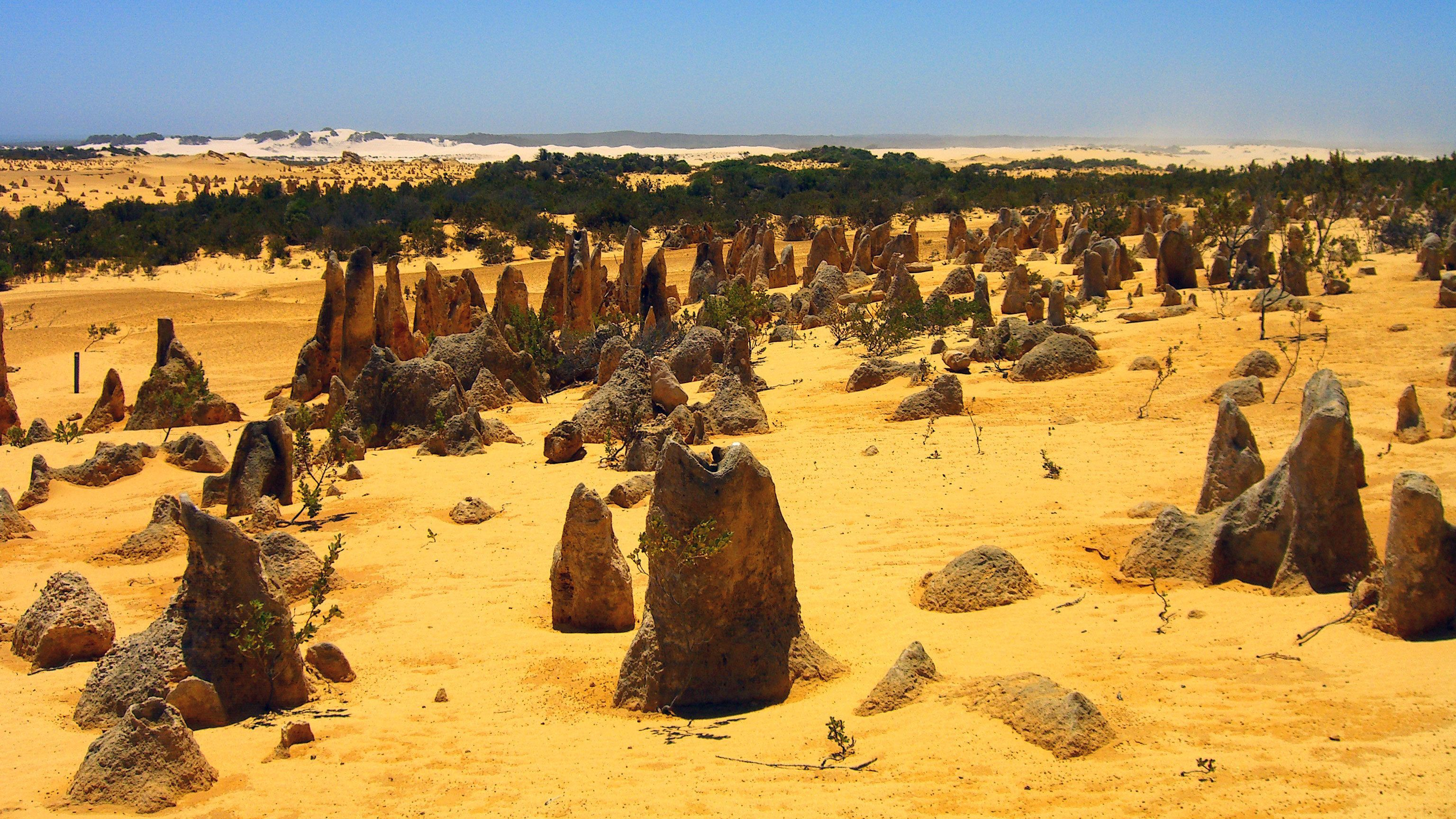 Iconic rock Formations in the Pinnacles desert