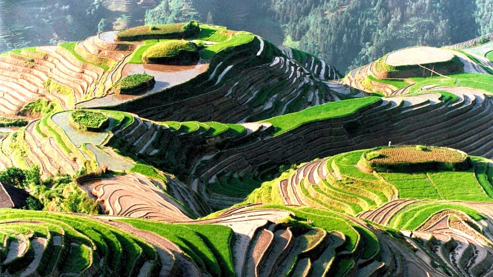 Show item 1 of 5. fields on the hills in xian