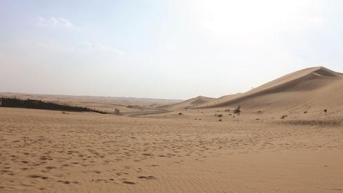 LIWA DESERT SAFARI-08.jpg