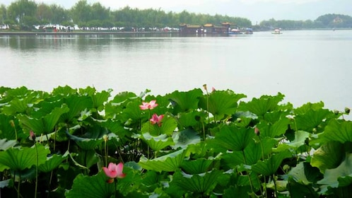 Scenic view of the lake in Hangzhou