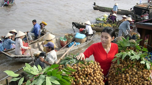 Woman picking longan from the river market in Vietnam