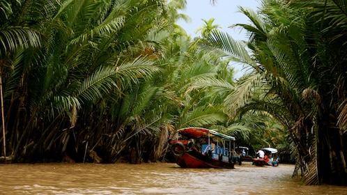Motorboat in Cái Bè to visit its lively floating market along the Tien River in Vietnam