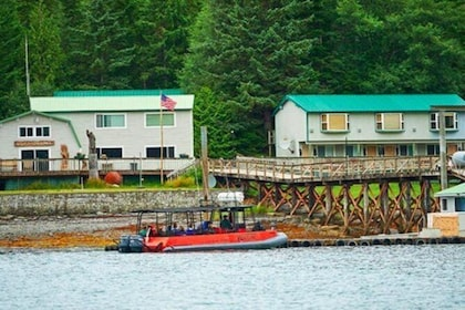 Ketchikan Shore Excursion: Silverking Lodge Adventure & Seafeast