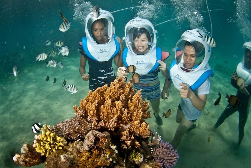 Show item 3 of 10. Bali Hai Lembongan Island Reef Cruise