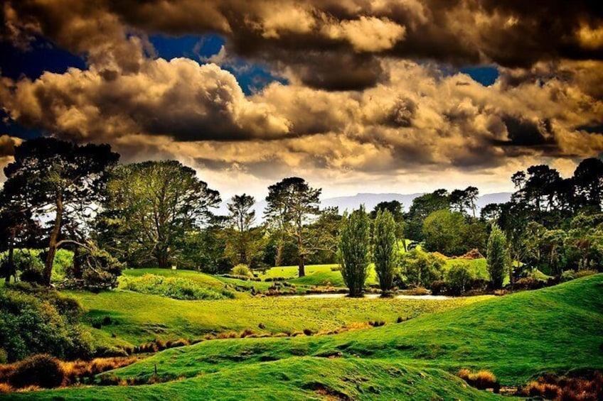 Lord of the Rings Hobbiton Movie Set Tour