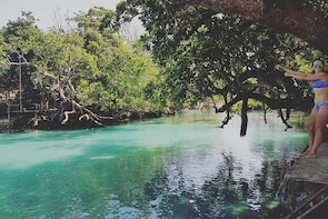 Discover Cascades and Swim with Turtles in Vanuatu
