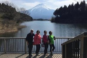 Private tour to Lake Tanuki, Shiraito Falls... for cruise ship passengers