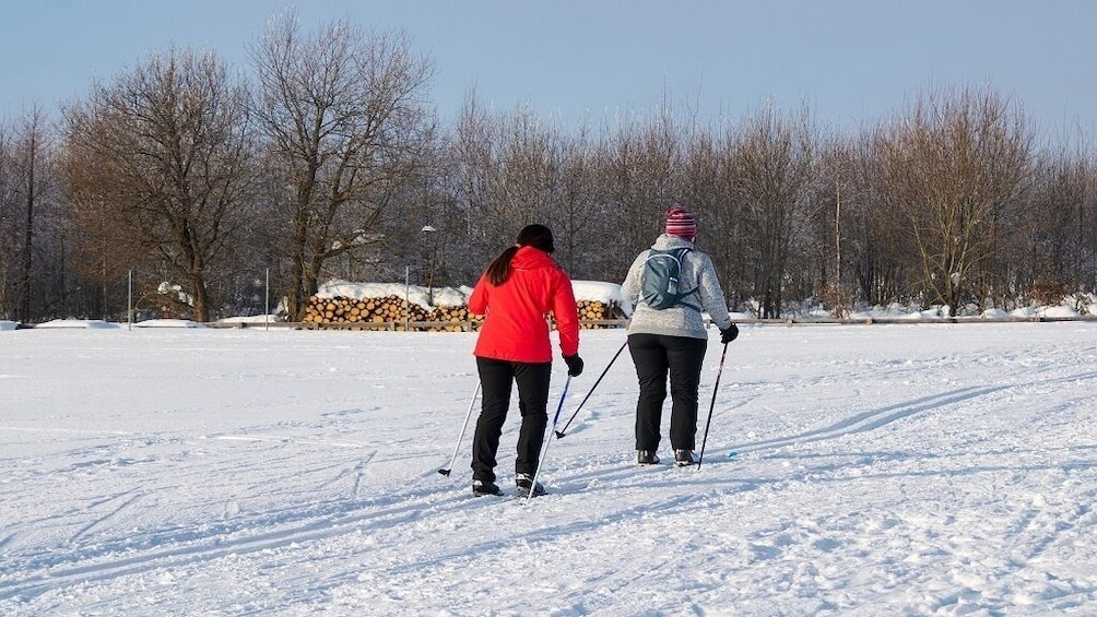 Show item 7 of 7. Sila National Park: half day with snowshoes and expert guide