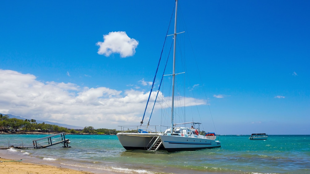 Show item 5 of 9. Catamaran just off the coast of St Lucia