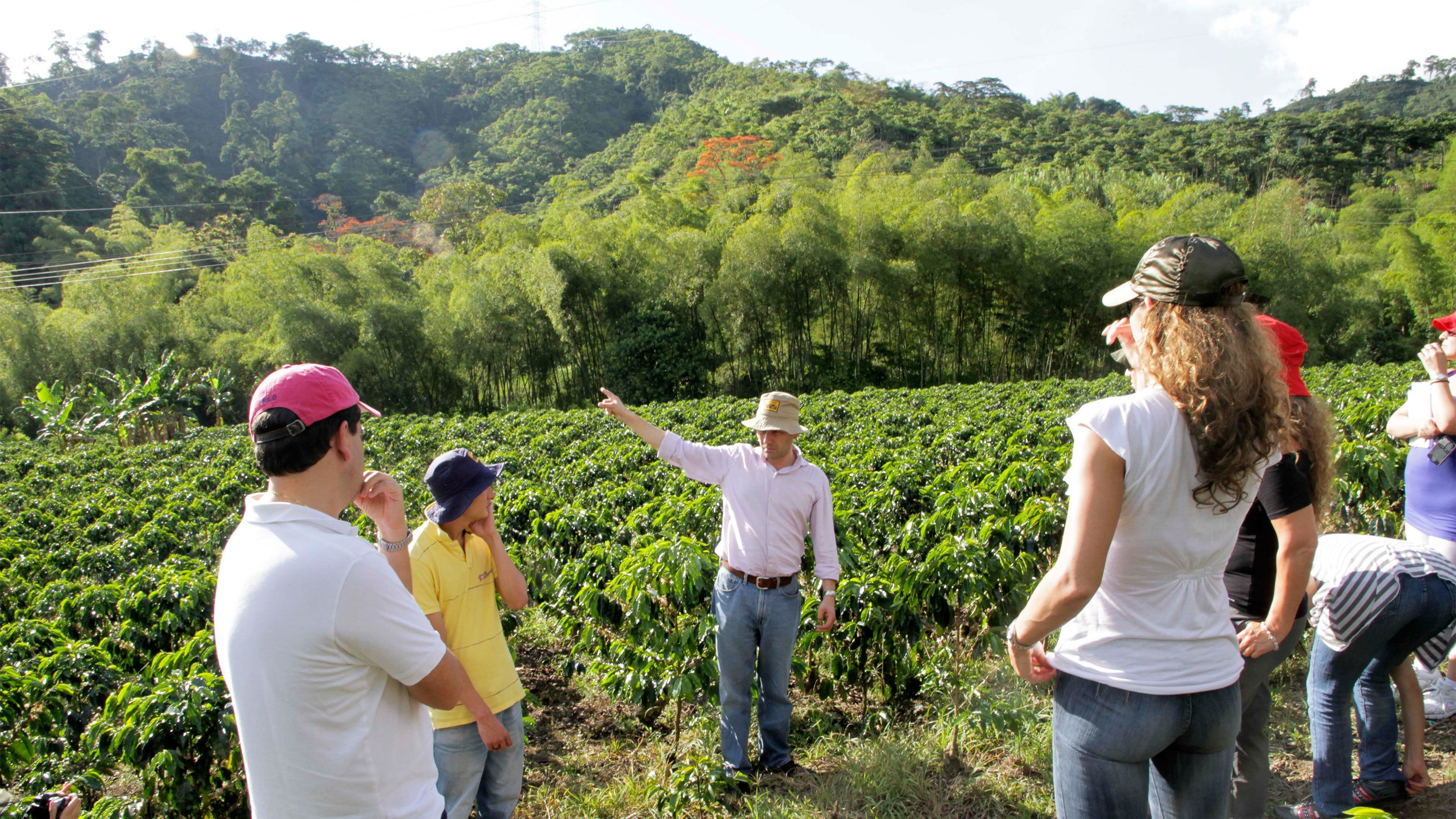 Tour group and guide at the La Gloria coffee plantation
