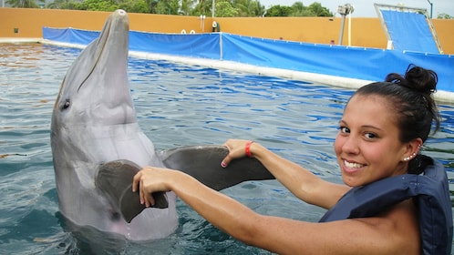 Woman and dolphin in a tank in Ixtapa