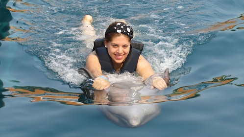 Dolphin pulling a woman through the water in Ixtapa