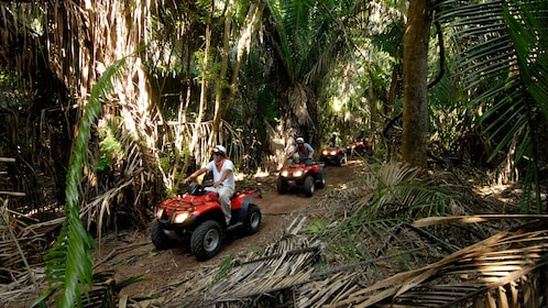 ATV group on a wooded path in Manzanillo