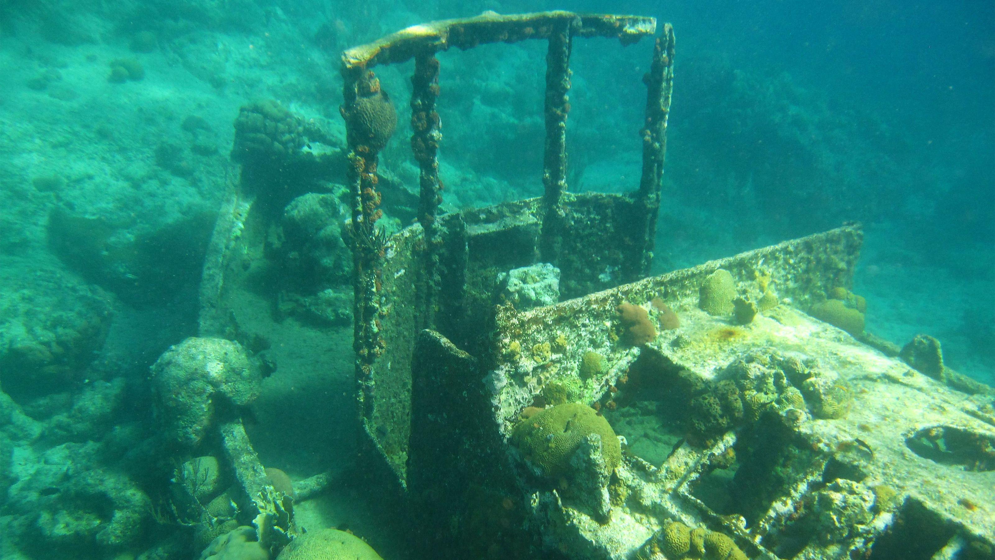 Tugboat & Reef Snorkel Tour