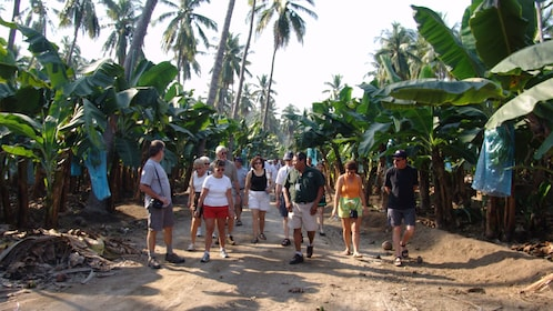Tour group with guide on a tropical path in Barra de Navidad