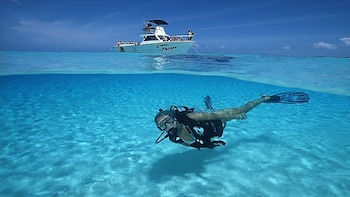 Scuba Diving Excursions