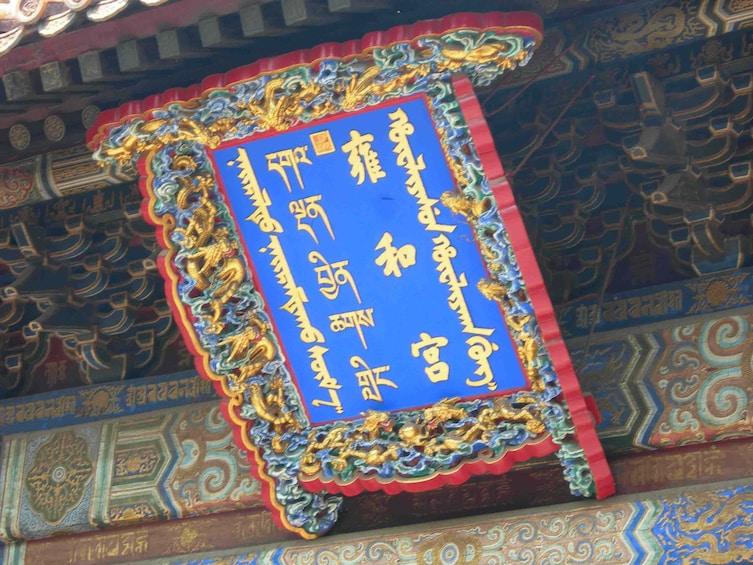 Summer Palace, Lama Temple & Giant Panda Encounter Day Tour