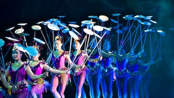Pekingin ankka -illallinen ja akrobatiashow – iltakierros