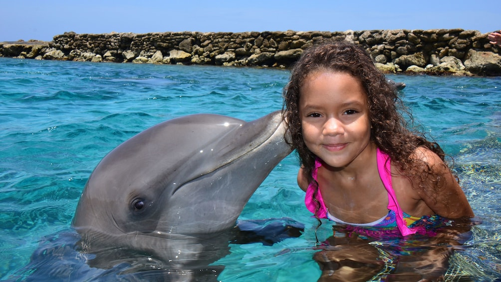 Foto 1 von 9 laden Girl receives kiss from dolphin at Dolphin Academy Curacao