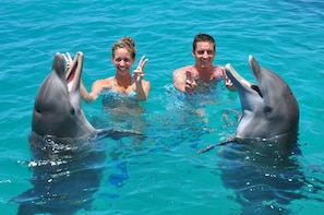 Dolphin Swim & Sea Aquarium Park
