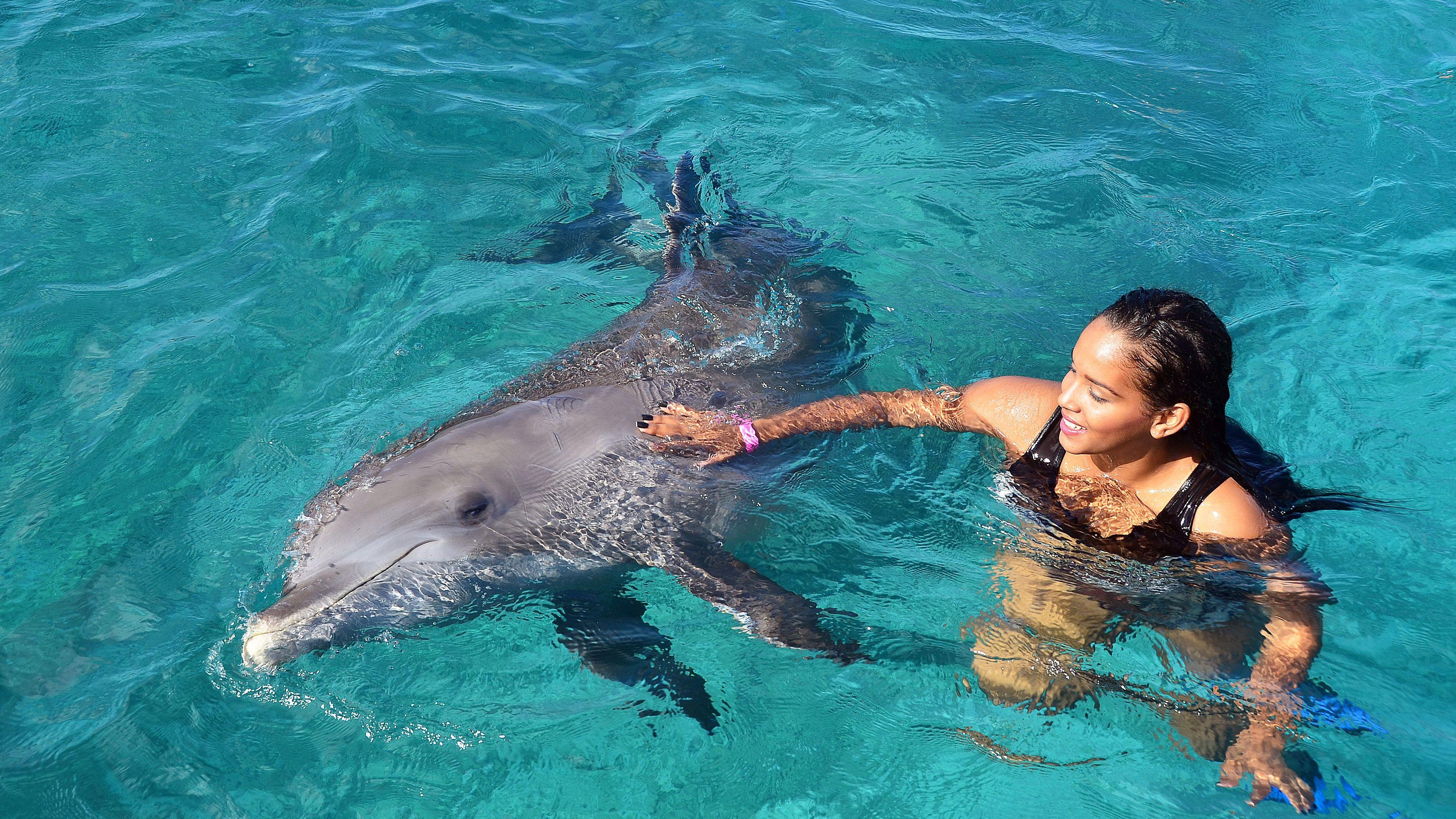 Dolphin Swim & Sea Aquarium Park