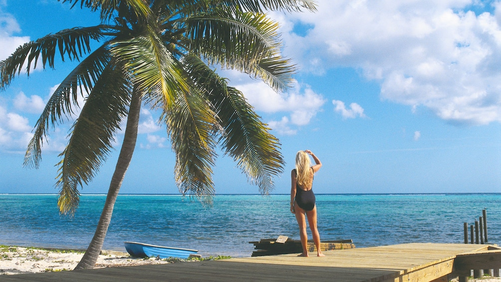 Show item 1 of 5. beach view in barbados