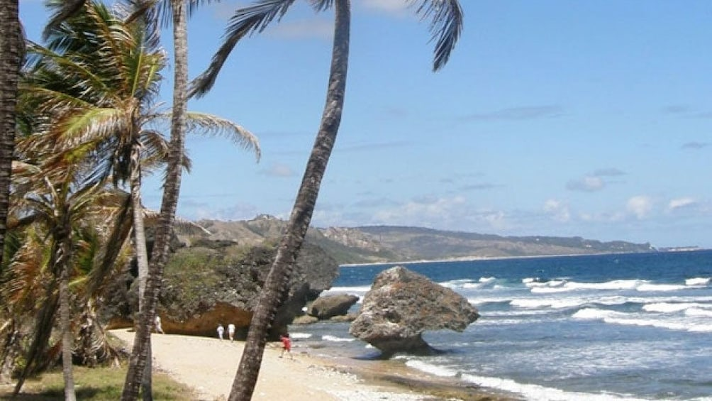 Show item 3 of 5. Beach and coastline in barbados